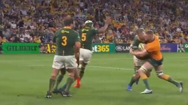Outrage over Wallaby's yellow card against Boks