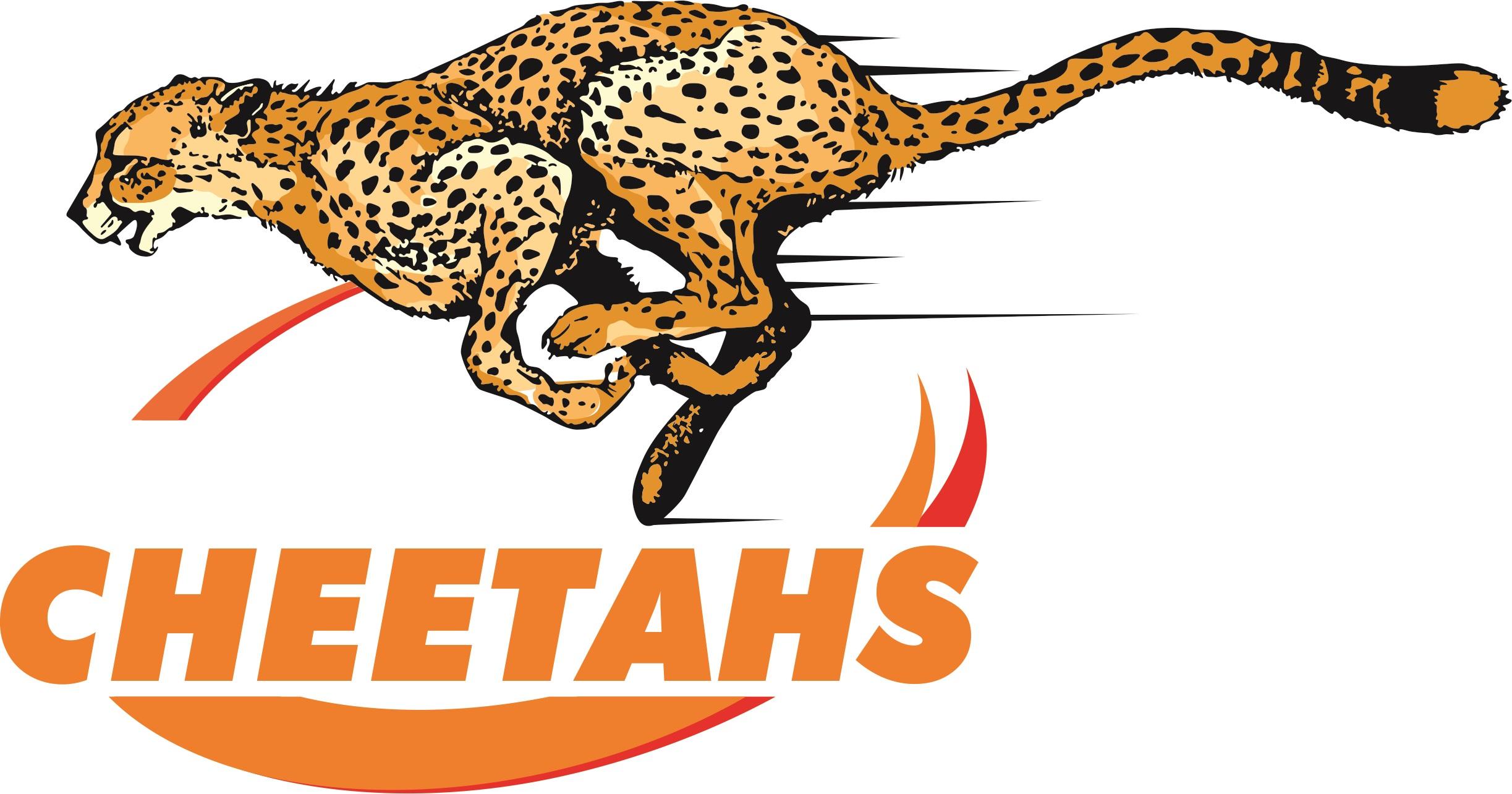 Super Rugby cull: Fear of failure choking Cheetahs