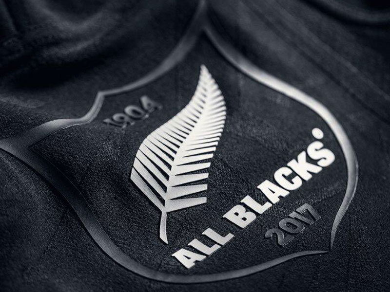All Blacks get new logo for Lions series