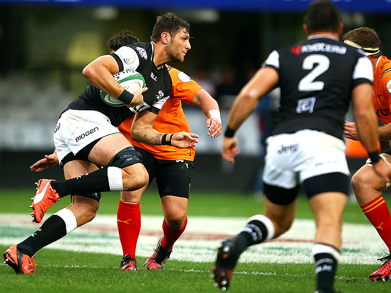 Cheetahs race to the top