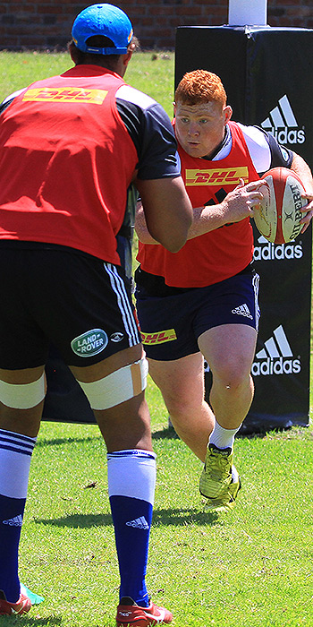 Preview: Golden Lions v Western Province